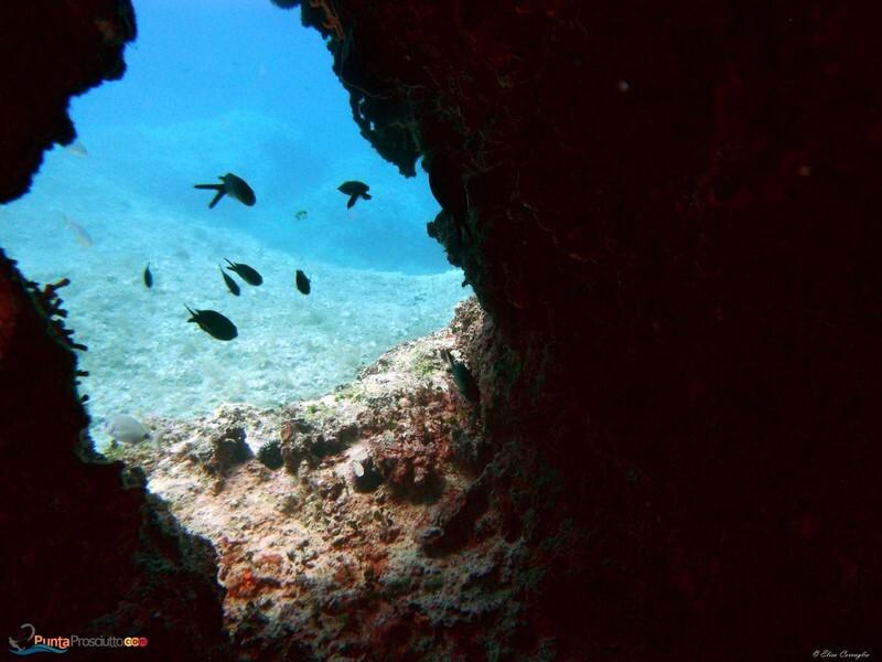 Zona per immersioni immersione torre lapillo i DI